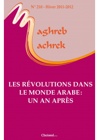 MM201221000 See the number 210 The revolutions in the Arab World