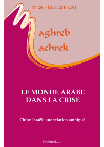 The social impact of the financial crisis in Morocco